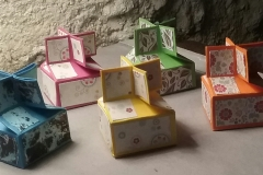 boxes erica